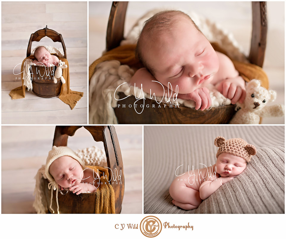 Wedding family and newborn photography c y wild photography